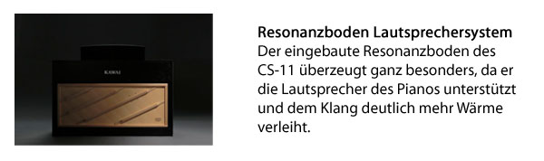 Resonanzboden CS11
